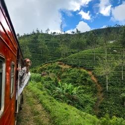 train 8-2